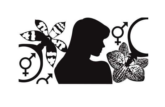Nous, antico-modernes (Le Monde, série d'été) 3/4  Confusion des genres